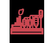 Технология переработки молока, помидоров, овощей и фруктов