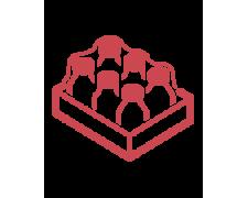 Оборудование для индивидуальной и групповой упаковки в картон и пленку